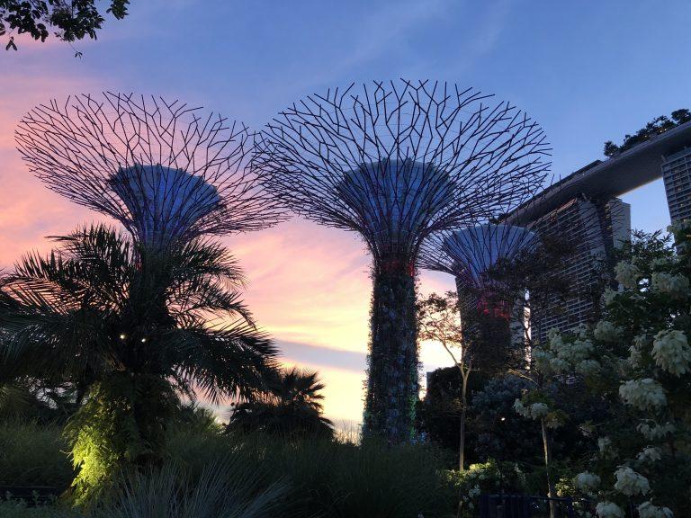 ガーデンズバイザベイ @ シンガポール