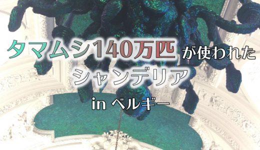 【ブリュッセル王宮】無料!タマムシ140万匹でできたシャンデリア